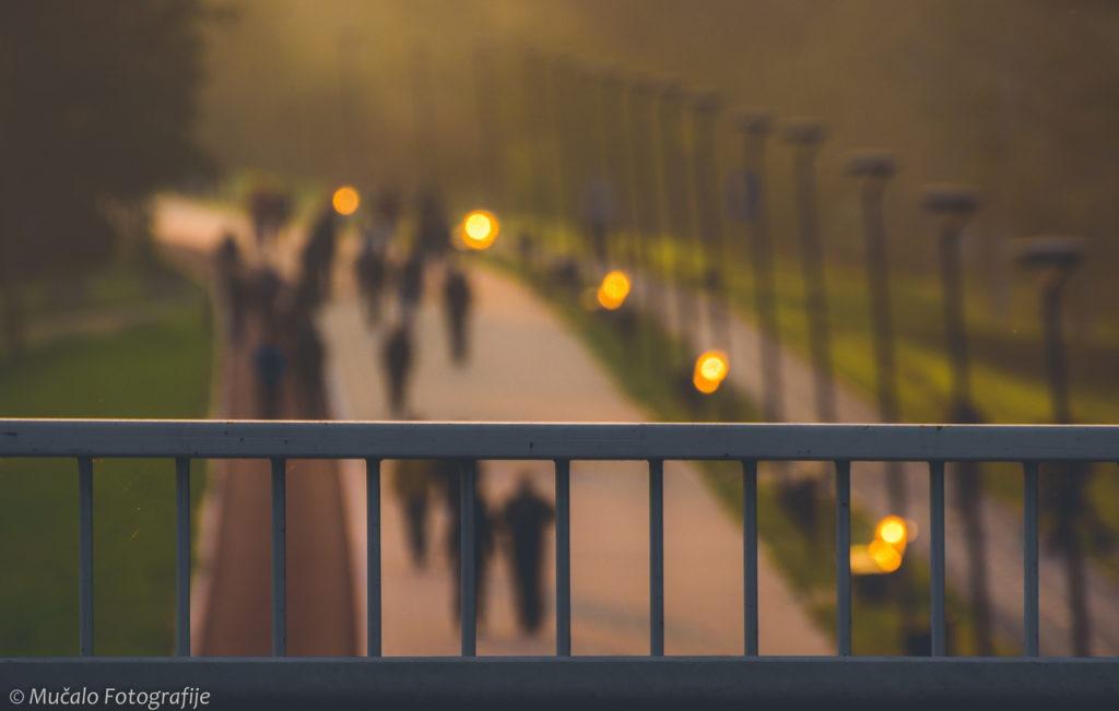 Leto u Novom Sadu most